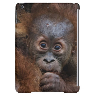 lovely orang baby case for iPad air