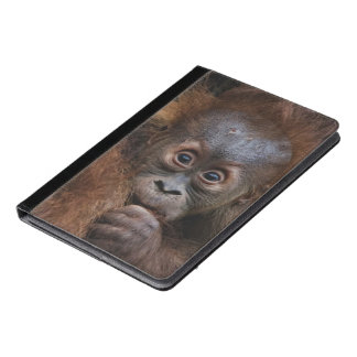 lovely orang baby iPad air case