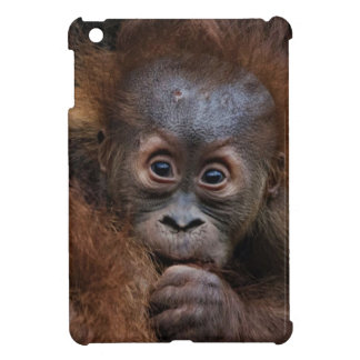 lovely orang baby iPad mini case