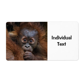 lovely orang baby label
