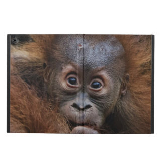 lovely orang baby powis iPad air 2 case
