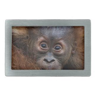 lovely orang baby rectangular belt buckle