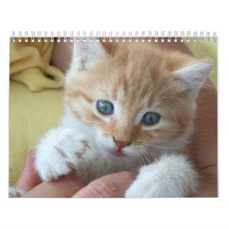 Lovely Orange Cats Calendar