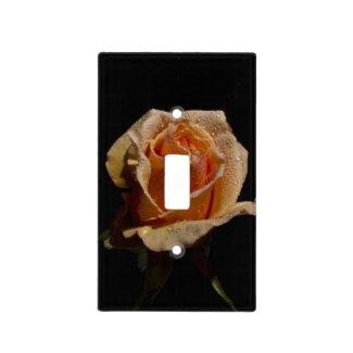 Lovely Orange Rose on Black Light Switch Plates