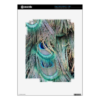 Lovely Peacock Feathers Big Blue Eyes iPad 2 Decal