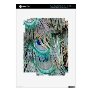 Lovely Peacock Feathers Big Blue Eyes Skin For iPad 3