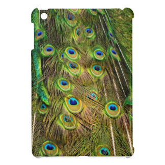 Lovely Peacock Tail Feathers iPad Mini Case