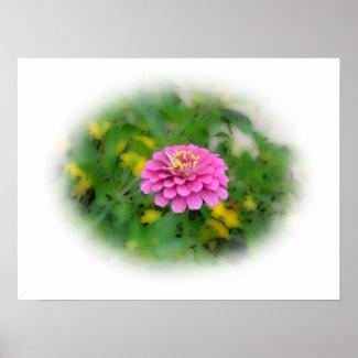 Lovely Pink Flower print