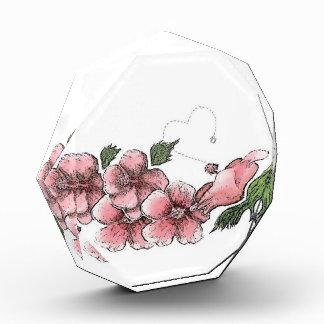 Lovely Pink Hibiscus Award