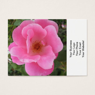 Lovely Pink Rose Flower Business Card