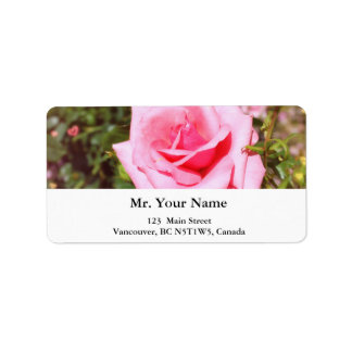 lovely pink rose flower with sweet  hearts address label