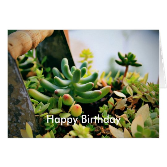 Lovely Potted Plants Card