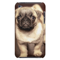 Lovely Puppy Pug, Dog, Pet, Animal Barely There iPod Case