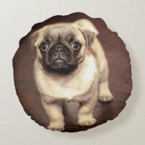Lovely Puppy Pug, Dog, Pet, Animal Round Pillow