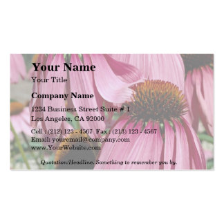 Lovely Purple coneflower, echinacea purpurea Double-Sided Standard Business Cards (Pack Of 100)