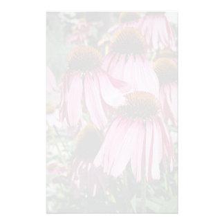 Lovely Purple coneflower, echinacea purpurea Stationery