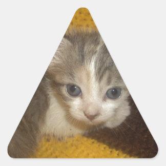 Lovely Pussycat Triangle Sticker