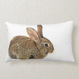 Lovely Rabbit Lumbar Pillow
