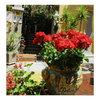 LOVELY RED FLOWERS IN CERAMIC POT POSTER