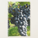 "Lovely ripe grapes. planner<br><div class=""desc"">Taken at a local biological winery.</div>"