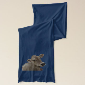 Lovely scarf with your favorite brown swiss.