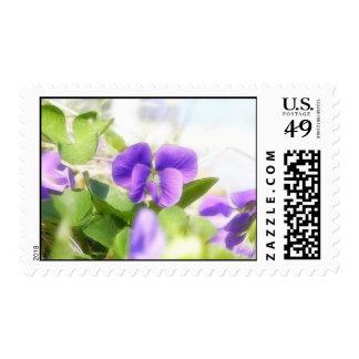 Lovely Spring Violet Postage Stamps