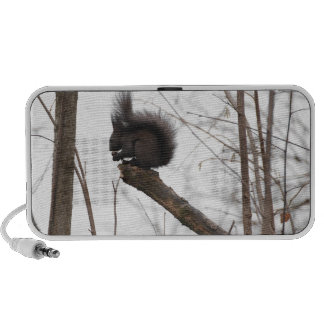 Lovely Squirrel Doodle Portable Speaker