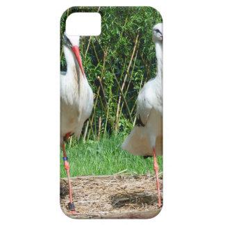 Lovely Stork iPhone 5 Cover