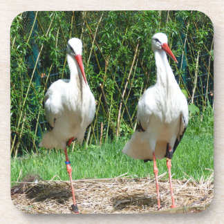 Lovely Stork Drink Coasters
