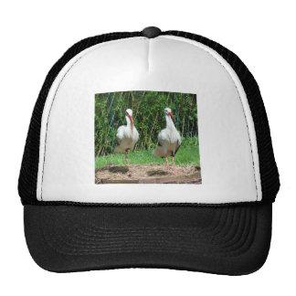 Lovely Stork Trucker Hat