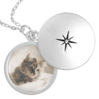 Lovely Sweet Cat Kitten Kitty Silver Plated Necklace