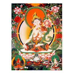 Lovely Tibetan Buddhist Art Postcard