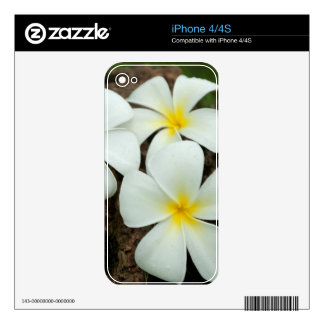 Lovely Tropical Blossoms In The South Pacific Decals For iPhone 4S