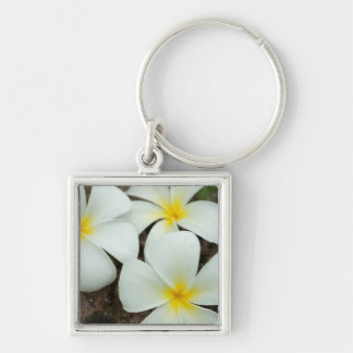 Lovely Tropical Blossoms In The South Pacific Keychain