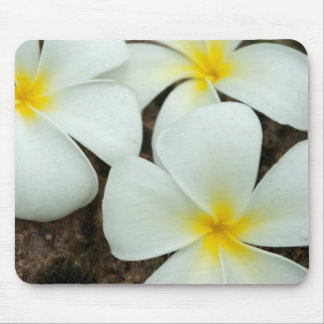 Lovely Tropical Blossoms In The South Pacific Mouse Pad