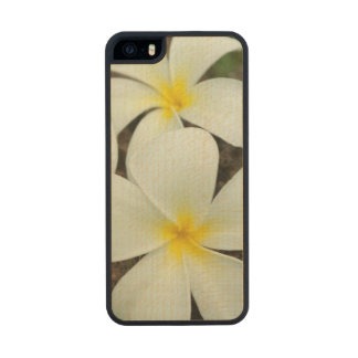 Lovely Tropical Blossoms In The South Pacific Wood iPhone SE/5/5s Case