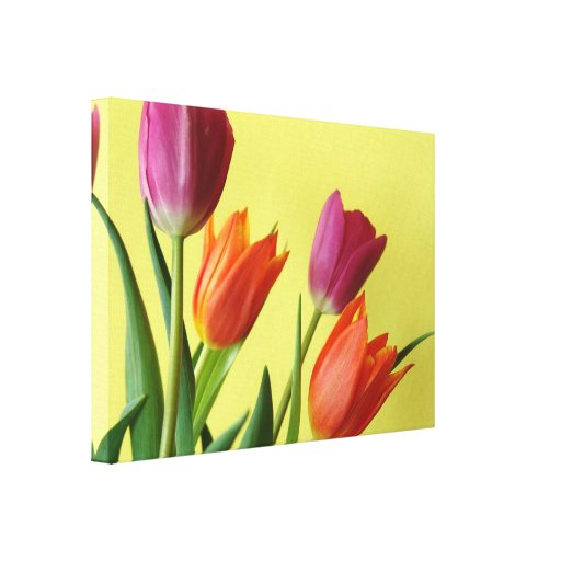 LOVELY TULIP FLORAL GALLERY WRAP CANVAS