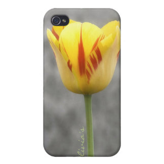 Lovely Tulip iPhone 4 Cases