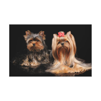 Lovely two canvas print