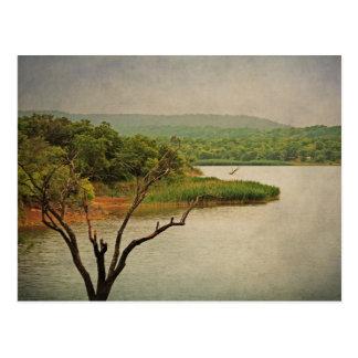 Lovely View at Cedar Hill postcard