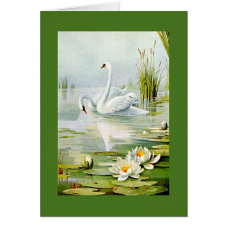 Lovely Vintage Swans Card