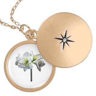 Lovely White Amaryllis Round Locket Necklace