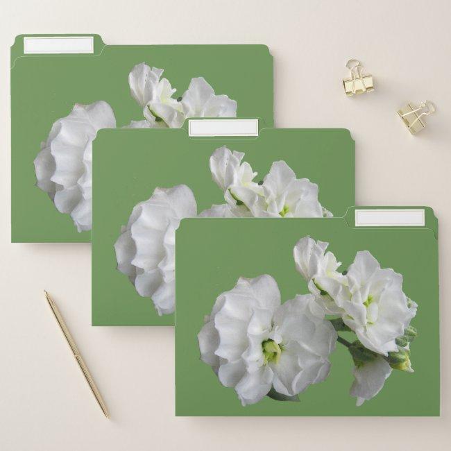 Lovely White Garden Flowers Floral File Folder Set