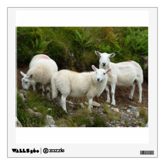 Lovely White Goats - Wall Decal Square