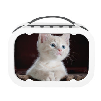 Lovely white kitty Yubo Lunchbox