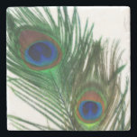 "Lovely White Peacock Feather Stone Coaster<br><div class=""desc"">These two peacock feathers are so beautiful.  The white background makes the green and blue colors of the feather look amazing.</div>"