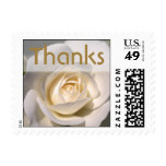 Lovely White Rose Floral Thank You Wedding Postage