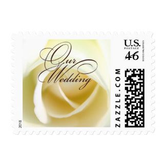 Lovely White Rose Our Wedding Small Postage