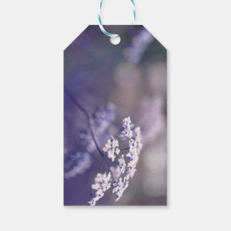 Lovely Wild Chervil Gift Tags