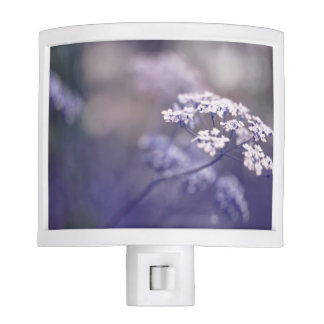 Lovely Wild Chervil Night Light